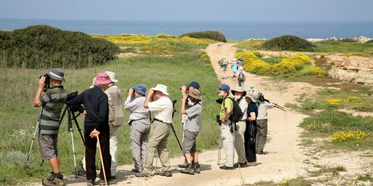 bird-watching-at-karpaz